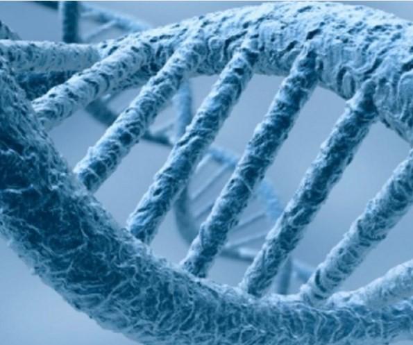 Sigara İnsan DNA'sını Değiştiriyor! - 1