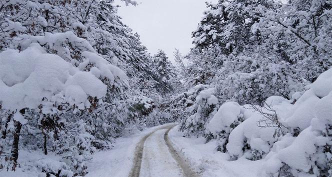 Kış Erken Başladı - 1