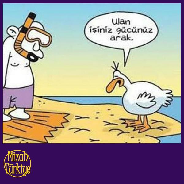 Nusret'in Kuşlara Yem Atışını Gördünüz mü? - 1