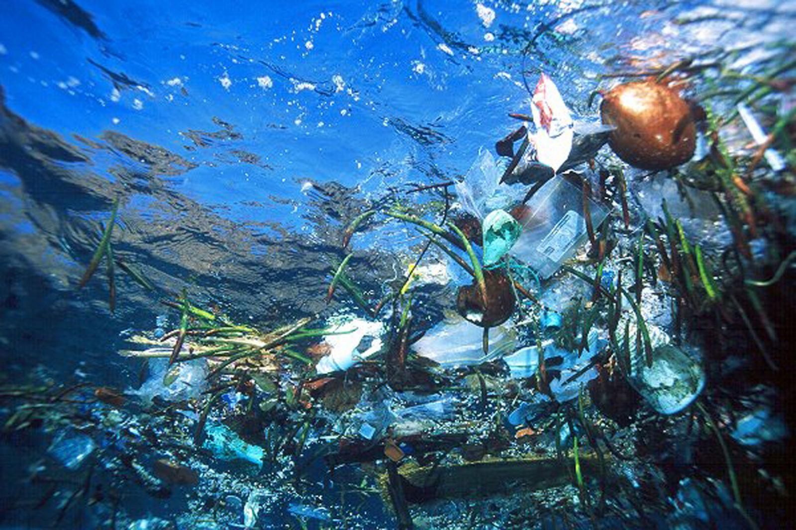 Plastik Atıklardan Yapılan Şaheser Dikkat Çekti! - 1