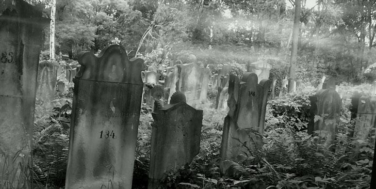 Mezarlıktan Gelen Seslerin Kaynağını Araştırınca Büyük Şok Yaşadılar - 1