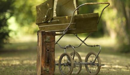 Cani Aile Bebeğini Çalıların Arasına Bırakıp Kaçtı!