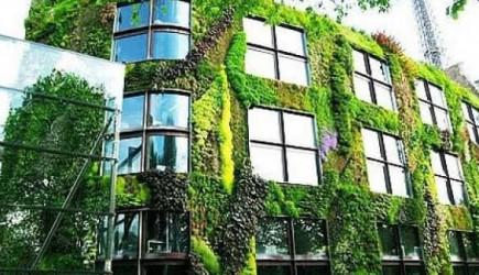Çevre Bakanlığı Doğa Dostu Projelere Sertifika Verecek