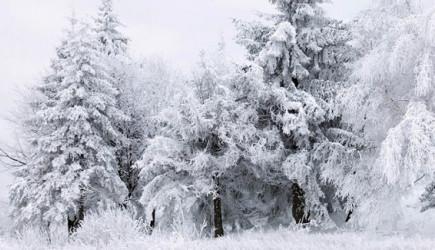 Meteoroloji Uyardı, Beklenen Kar Geliyor