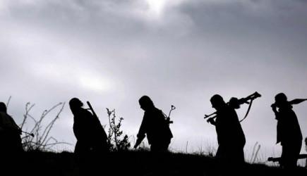 PKK'da Çözülme Devam Ediyor! Hepsi Teslim Oldu