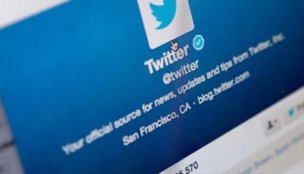 Twitter'da Sivrisineği Tehdit Eden Kullanıcının Hesabı Askıya Alındı!