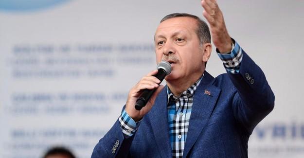 'Anadolu'nun Çocuklarını Bize Düşman Yaptılar'