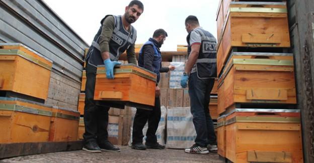 Arı kovanlarından 100 bin paket çıktı