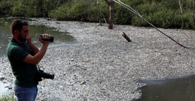 Bolu'da Korkunç Olay! Görenler Gözlerine İnanamadı