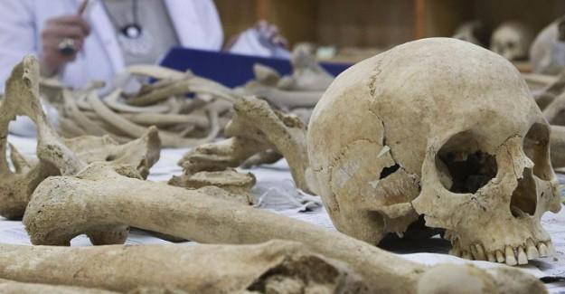 'Ölüm Meleği'nin Kemikleri Ders Malzemesi Oldu