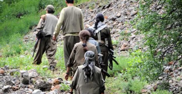 PKK'nın Hain Planı Deşifre Oldu! Vali O İl İçin Çağrı Yaptı
