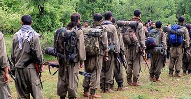 PKK'nın İçinde Kanlı Hesaplaşma! Üst Düzey Yönetici Öldürüldü