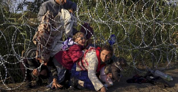 Vekilden İnsanlık Dışı Teklif: Sınıra Domuz Kafası Asalım!