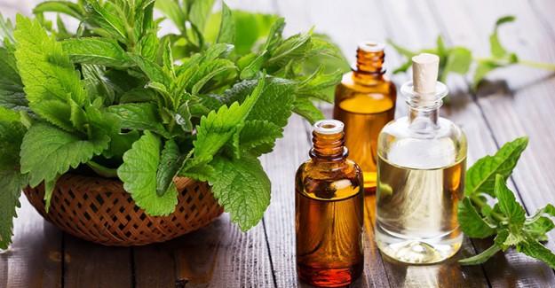 Bitkisel Yağlarla Sağlıklı Bronzlaşmanın Altın Kuralları!