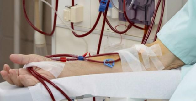 Böbrek Hastalığı Artıyor Ama Organ Bağışı Yetersiz