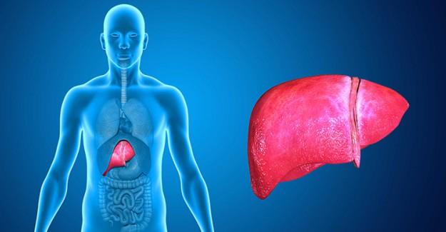 Bu Alışkanlıklarınız Karaciğerinize Zarar Veriyor!