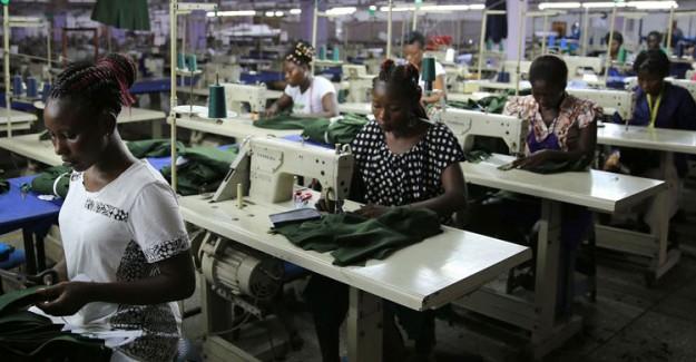 Gana Nüfusunun Yüzde 10'u Çocuk İşçi !