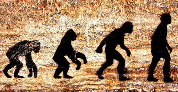 İnsanla Maymun Arasındaki %98'lik Benzerlik Evrime Delil Mi?
