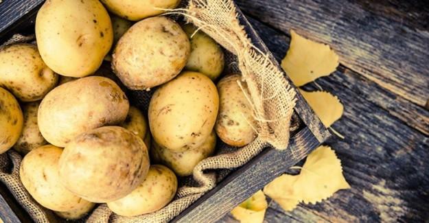 Patates Filizlendiğinde Bakın Ne Meydana Geliyor!