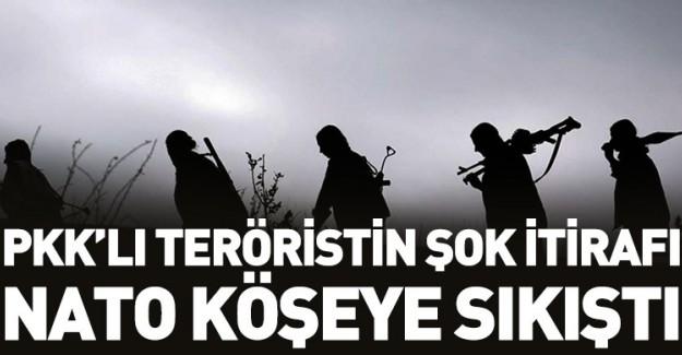 PKK'lı Teröristlerden Skandal İtiraflar!