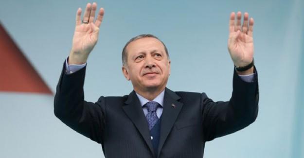 Reis-i Cumhur Erdoğan Açıkladı! Cam Film Uygulaması Yanlış!