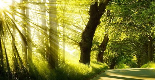 Sıkıntı Karşısında Müslümanı Rahatlatacak 8 Şey