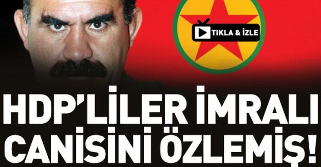 Sırrı Süreyya Önder Teröristbaşını Özlemiş!