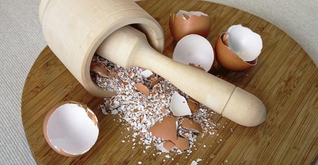 Yumurta Kabuklarını Atmadan Önce Bir Kez Daha Düşünün!