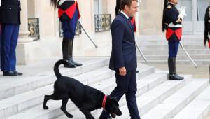 Macron'dan Nijer Cumhurbaşkanına Aşağılayıcı Hareket!