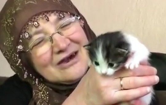 Tüm İçtenliğiyle Yavru Kediyi Sevdi