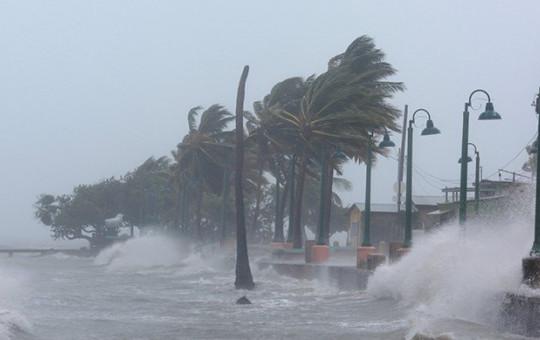 ABD'de Irma Kasırgası Alarmı: Marketler Talan Edildi!