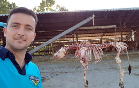 Genç Adam Kurbanın İskeletini Bozmadan Etlerini Ayırdı!
