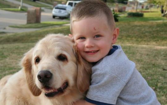 Sevdiği Köpek Az Kalsın Öldürüyordu!