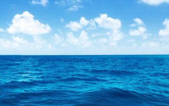 Balık Tutmak İçin Girdiği Denizden Tanınmaz Halde Çıktı!
