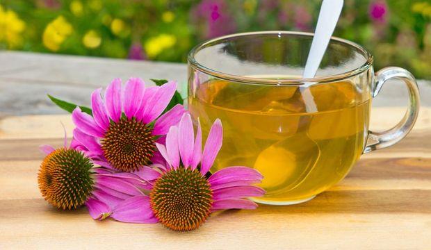 Gribe ve Soğuk Algınlığa Karşı Yanınızdan Ayırmamanız Gereken Bitkiler - 1
