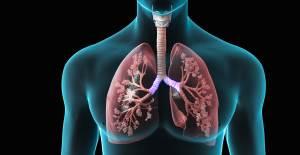 3 Günde Akciğerinizi Tertemiz Yapacak Detoks Tarifi