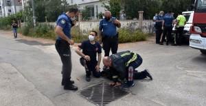 Antalya'da Bir Genç Uyuşturucu Almak İçin Kanalizasyona Girdi