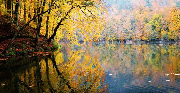 Sonbahar Da Bolu'nun Renkleriyle Mest Olun