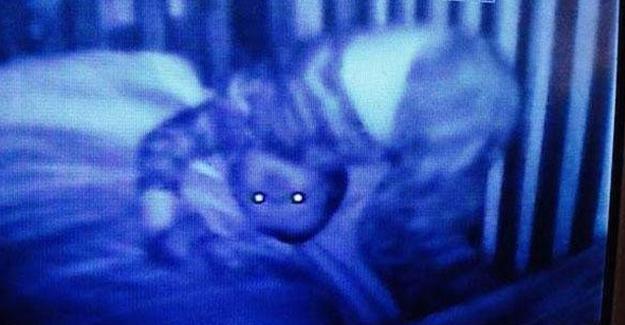 Bebeğinin Odasına Kamera Koyan Anne Gördüleri Karşısında Şoke Oldu! - 1