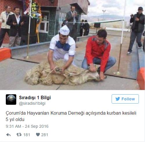 'Başka Ülkede Yaşayamam' Dedirtecek 15 Türkiye Manzarası - 1