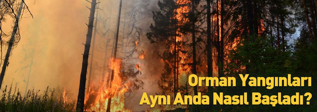 Orman Yangınları Aynı Anda Nasıl Başladı?