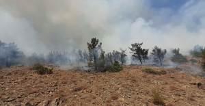 Ege Bölgesinde Zincirleme Orman Yangını! - 1