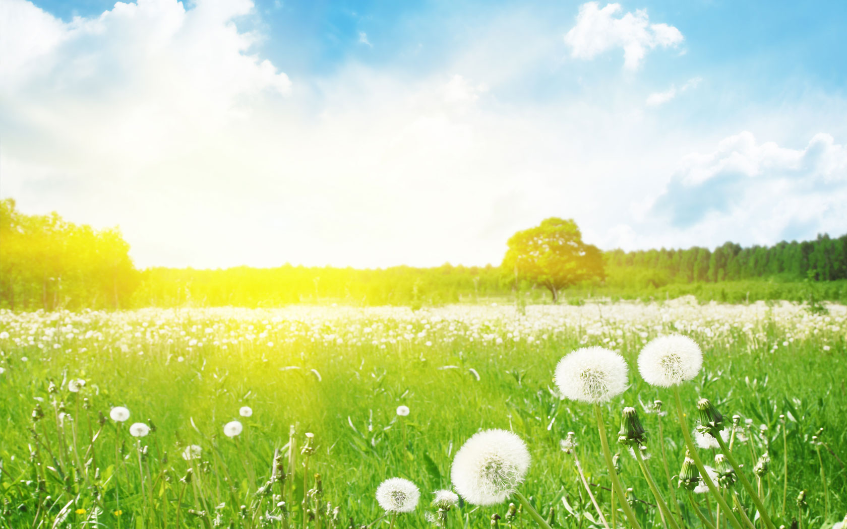 Yaz Aylarında Hayatınıza Kolaylık Sağlayacak 10 Altın Öneri - 2