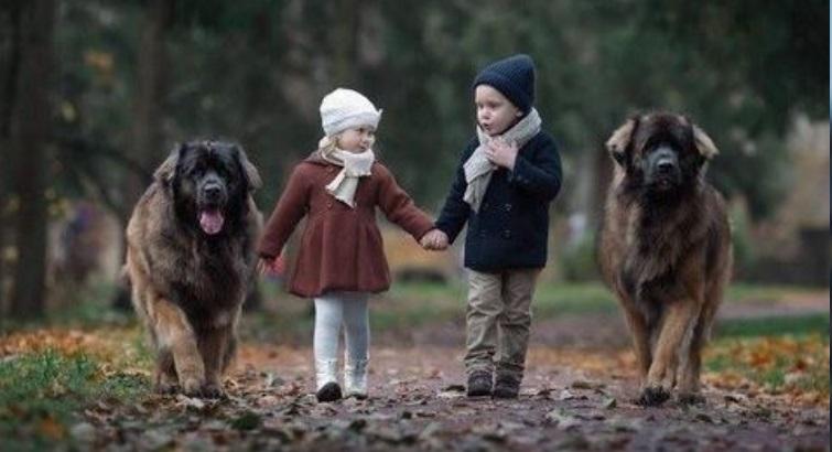 Hayvanlarla Çekilen Muhteşem Fotoğraflar - 1