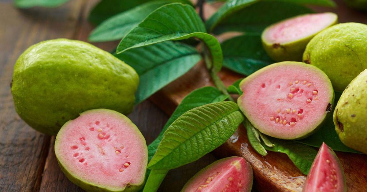 guava meyvesinin faydaları nelerdir