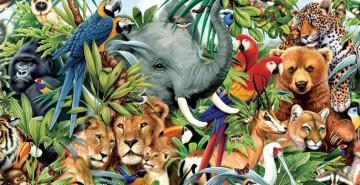 Hayvanlar Hastalıklara Çare Olacak!
