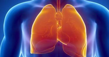 Ciğerleri Üşütmek Nasıl Geçer?