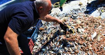 Doğu Akdeniz'de Denizden Balık Yerine Çöp Çıkıyor