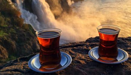 Günde Kaç Bardak Çay İçilmeli?
