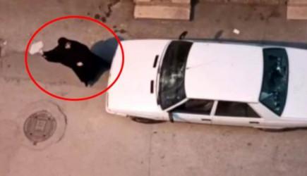 Kocasını Başka Kadınla Yakaladı, Mahalleyi Ayağa Kaldırdı